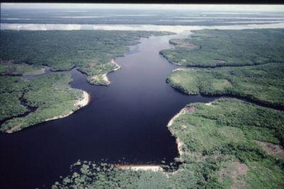 Миссисипи – отец вод